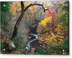 Acrylic Print featuring the photograph River Gorge by Daniel Behm