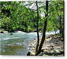 Acrylic Print featuring the photograph River Gorge by Deborah DeLaBarre