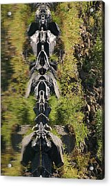 Acrylic Print featuring the photograph River Guardians by Marie Neder