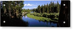 River In A Forest, Don Mcgregor Acrylic Print by Panoramic Images