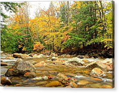 Acrylic Print featuring the photograph River In Fall Colors by Amazing Jules