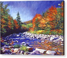 River Of Autumn Colors Acrylic Print by David Lloyd Glover