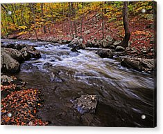 River Of Color Acrylic Print by Dave Mills