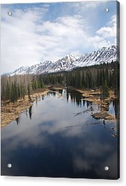 River Reflection Acrylic Print