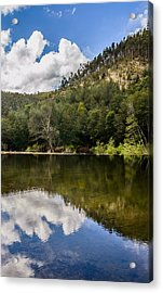 River Reflections I Acrylic Print by Marco Oliveira