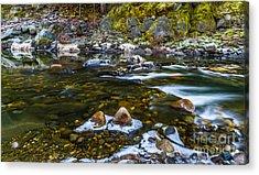 River Run Acrylic Print by Mitch Shindelbower