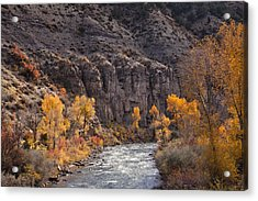 River Through The Aspen Acrylic Print by David Kehrli