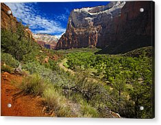 River View In Zion Park Acrylic Print