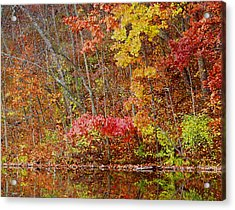 Riverbank Beauty Acrylic Print by James Hammen