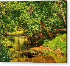 River's Bend Acrylic Print by Kathi Isserman