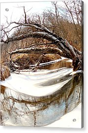 Rivers Eye Acrylic Print by Sharon Costa