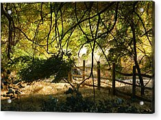 Riverwalk Locust Grove Acrylic Print