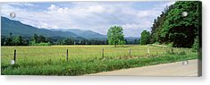 Road Along A Grass Field, Cades Cove Acrylic Print by Panoramic Images