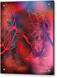 Road Between Worlds Acrylic Print by David Neace