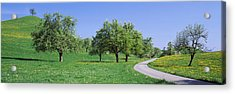 Road Cantone Zug Switzerland Acrylic Print by Panoramic Images