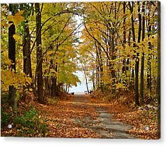 Road Ends At Water Acrylic Print by BackHome Images