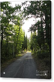 Road In Loppiano Acrylic Print