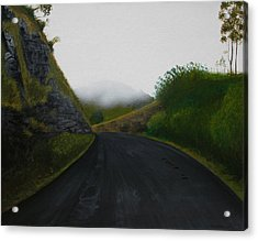 Acrylic Print featuring the painting Road Near Gresford Nsw by Tim Mullaney