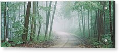 Road Passing Through A Forest, Skyline Acrylic Print by Panoramic Images