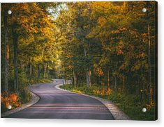 Road To Cave Point Acrylic Print by Scott Norris