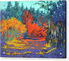 Acrylic Print featuring the painting Road To Deer Creek by Nancy Jolley
