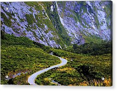 Acrylic Print featuring the photograph Road To Middle Earth by David Rich