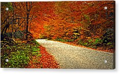 Road To Nowhere Acrylic Print by Bill Howard