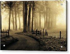Road To Nowhere... Acrylic Print