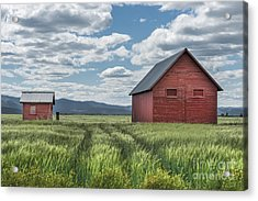Road To Nowhere Acrylic Print by Sandra Bronstein
