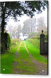 Acrylic Print featuring the photograph Road To Nowhere by Suzanne Oesterling
