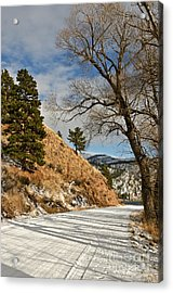 Road To The Lake Acrylic Print by Sue Smith