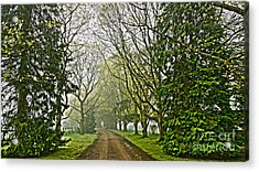 Road To The Manor House Acrylic Print