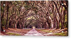 Road To The South Acrylic Print by Renee Sullivan