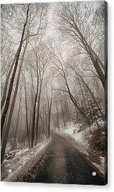 Road To Winter Acrylic Print by Karol Livote