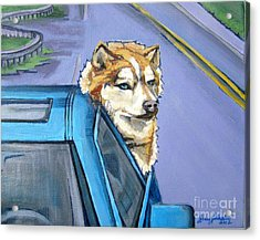 Road-trip - Dog Acrylic Print