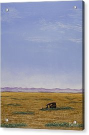 Roadside Attraction Acrylic Print by Jack Malloch