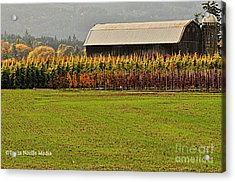 Acrylic Print featuring the photograph Roadside Barn by Tonia Noelle