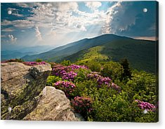 Roan Mountain From Appalachian Trail Near Jane's Bald Acrylic Print