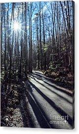 Roaring Fork Road Acrylic Print by Debbie Green
