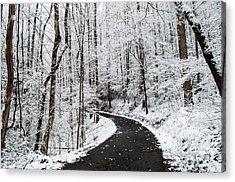 Roaring Fork Snowy Road Acrylic Print by Debbie Green