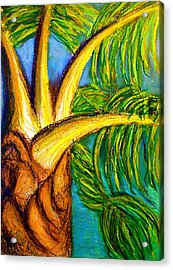 Acrylic Print featuring the drawing Roatan Revel by D Renee Wilson