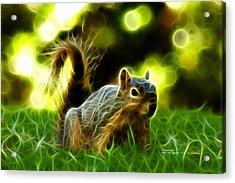 Robbie The Squirrel - 7376 - F Acrylic Print