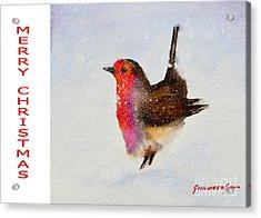 Robin Christmas Card Acrylic Print by Genevieve Brown