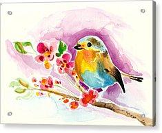 Robin In Flowers Acrylic Print by Tiberiu Soos