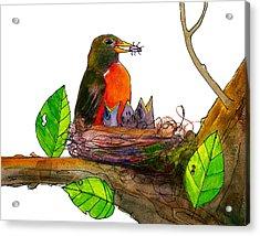 Robin Love Bug Acrylic Print by Blenda Studio