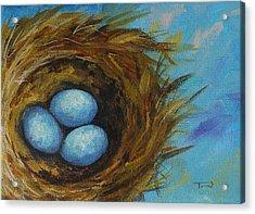 Robin's Three Eggs Viii Acrylic Print by Torrie Smiley