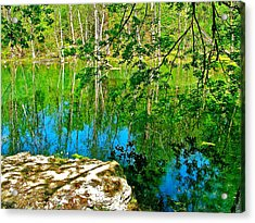Rock And Spring On Rock Spring Trail Near Natchez Trace Parkway-alabama  Acrylic Print by Ruth Hager