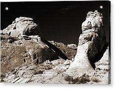 Rock Chatter Acrylic Print by John Rizzuto