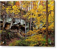 Rock Fall Gorge Acrylic Print