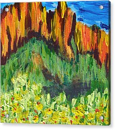 Rock Of Many Colors Acrylic Print by Marcia Weller-Wenbert